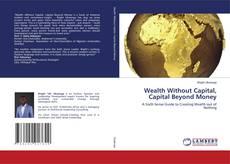 Borítókép a  Wealth Without Capital, Capital Beyond Money - hoz