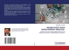 Buchcover von NEURO-FUZZY DATA ENVELOPMENT ANALYSIS