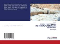 Обложка FETON PROCESS FOR INDUSTRIAL WASTEWATER TREATMENT
