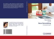 Bookcover of Bone Remodeling