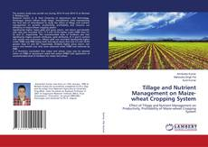 Bookcover of Tillage and Nutrient Management on Maize-wheat Cropping System