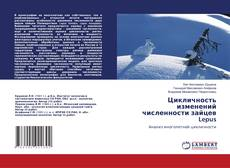 Bookcover of Цикличность изменений численности зайцев Lepus