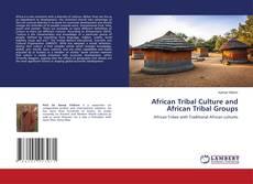 Borítókép a  African Tribal Culture and African Tribal Groups - hoz