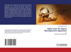 Agile Lean Six Sigma Management Approach的封面