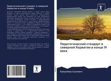 Portada del libro de Педагогический стандарт в северной Хорватии в конце 19 века