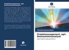 Copertina di Projektmanagement, agil, Bewusstseinsanalyse