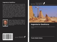Bookcover of Ingeniería Geofísica
