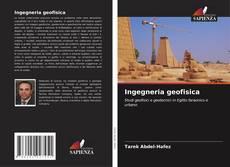 Bookcover of Ingegneria geofisica