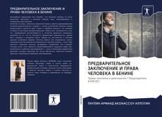Capa do livro de ПРЕДВАРИТЕЛЬНОЕ ЗАКЛЮЧЕНИЕ И ПРАВА ЧЕЛОВЕКА В БЕНИНЕ