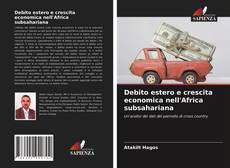 Debito estero e crescita economica nell'Africa subsahariana kitap kapağı