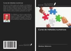 Buchcover von Curso de métodos numéricos