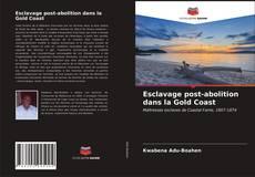 Esclavage post-abolition dans la Gold Coast kitap kapağı