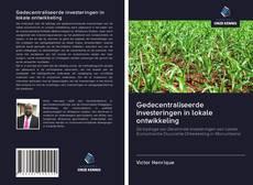 Bookcover of Gedecentraliseerde investeringen in lokale ontwikkeling