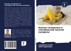Capa do livro de Анализ гетерозиса и способностей желтой кукурузы