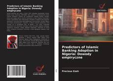 Обложка Predictors of Islamic Banking Adoption in Nigeria: Dowody empiryczne