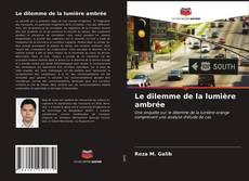 Bookcover of Le dilemme de la lumière ambrée