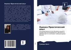 Bookcover of Оценка Практический опыт