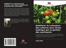 Portada del libro de Améliorer la croissance des cultures sous stress hydrique par la gestion des nutriments