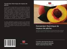 Capa do livro de Conversion thermique de noyaux de pêche: