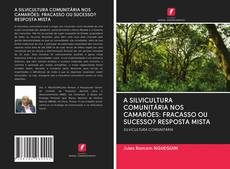 Bookcover of A SILVICULTURA COMUNITÁRIA NOS CAMARÕES: FRACASSO OU SUCESSO? RESPOSTA MISTA