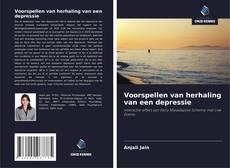Buchcover von Voorspellen van herhaling van een depressie