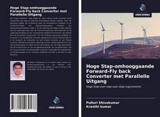 Bookcover of Hoge Stap-omhooggaande Forward-Fly back Converter met Parallelle Uitgang