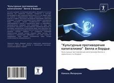"""Bookcover of """"Культурные противоречия капитализма"""" Белла и Бордье"""