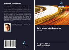 Diagnose stadswegen kitap kapağı