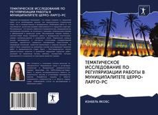 Portada del libro de ТЕМАТИЧЕСКОЕ ИССЛЕДОВАНИЕ ПО РЕГУЛЯРИЗАЦИИ РАБОТЫ В МУНИЦИПАЛИТЕТЕ ЦЕРРО-ЛАРГО-РС