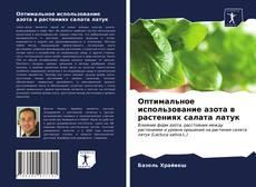 Buchcover von Оптимальное использование азота в растениях салата латук