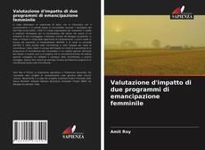 Copertina di Valutazione d'impatto di due programmi di emancipazione femminile