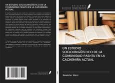 Bookcover of UN ESTUDIO SOCIOLINGÜÍSTICO DE LA COMUNIDAD PASHTU EN LA CACHEMIRA ACTUAL