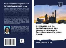 Исследование по адсорбции газа для сланцев Longmaxi в бассейне реки Сычуань, Китай的封面