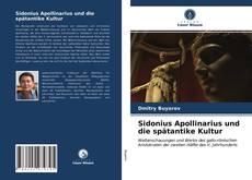 Copertina di Sidonius Apollinarius und die spätantike Kultur