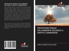 Bookcover of PROTEZIONE PENALE DELL'AMBIENTE SECONDO IL DIRITTO CAMERUNESE