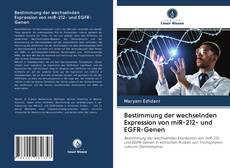 Copertina di Bestimmung der wechselnden Expression von miR-212- und EGFR-Genen