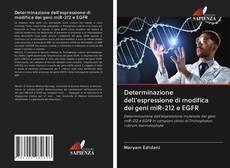Copertina di Determinazione dell'espressione di modifica dei geni miR-212 e EGFR