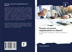 Bookcover of Пузырь на рынке недвижимости в Вене?!