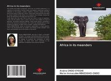 Bookcover of Africa in its meanders