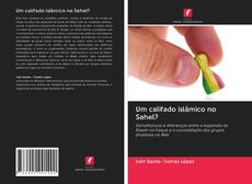 Bookcover of Um califado islâmico no Sahel?