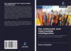 Bookcover of Een onderzoek naar meervoudige intelligenties:
