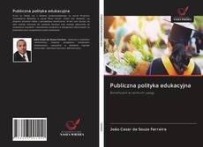 Publiczna polityka edukacyjna kitap kapağı