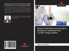 """Bookcover of Study of bacterial community in samples of substrate from """"Luchki"""" biogas station"""