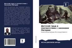 Обложка Детский труд в соответствии с законами Нигерии