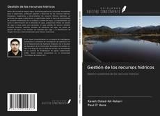 Gestión de los recursos hídricos的封面
