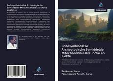 Bookcover of Endosymbiotische Archeologische Bemiddelde Mitochondriale Disfunctie en Ziekte