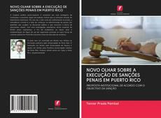 Capa do livro de NOVO OLHAR SOBRE A EXECUÇÃO DE SANÇÕES PENAIS EM PUERTO RICO