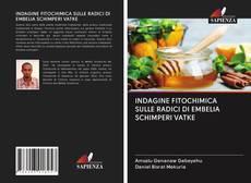 Bookcover of INDAGINE FITOCHIMICA SULLE RADICI DI EMBELIA SCHIMPERI VATKE
