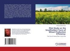Borítókép a  Pilot Study on the Smallholders' Farm of Wheat Production Efficiency: - hoz