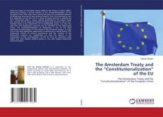 """The Amsterdam Treaty and the """"Constitutionalization"""" of the EU的封面"""
